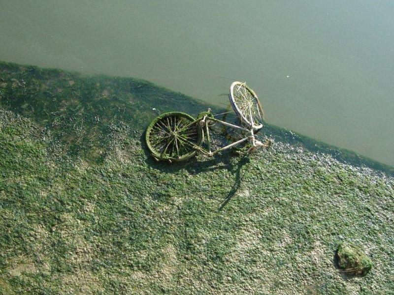 Rifiuti nel fiume Misa