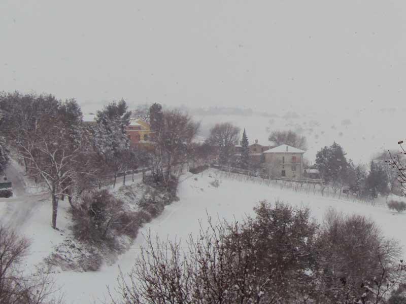 Entroterra senigalliese imbiancato dalla neve