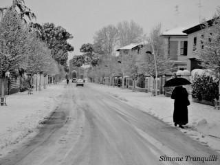 Senigallia e la neve. Foto di Simone Tranquilli
