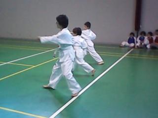 Gli esami di Taekwondo alla palestra del Perticari di Senigallia