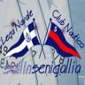 Sailin Senigallia