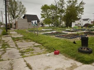 "mostra ""Detroit, the growing city"" di Giada Connestari"