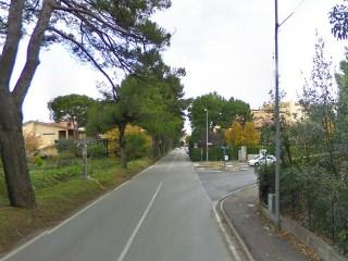 Viale Dei Pini, a Senigallia: tratto compreso tra via degli Oleandri (dx) e via Mercantini (in fondo)