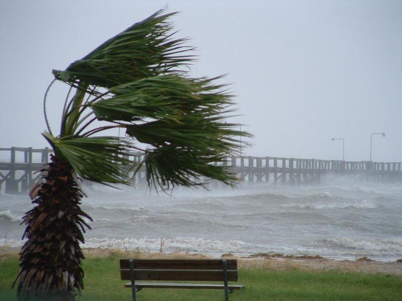 Previste forti raffiche di vento
