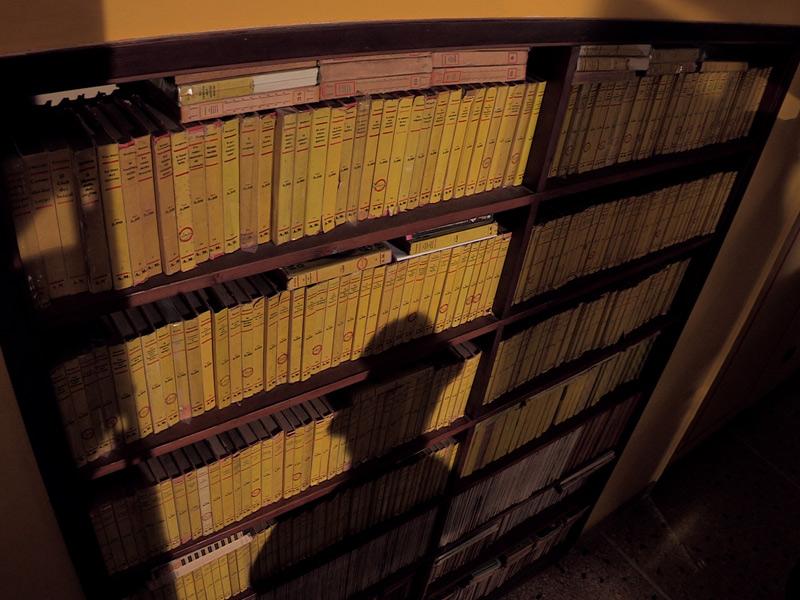 """""""La Camera Gialla"""", l'incredibile spazio allestito dalla 'Fondazione Rosellini per la letteratura popolare' nella propria sede di viale Bonopera"""