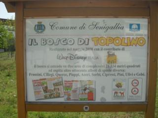 Il cartello del Bosco di Topolino a Senigallia