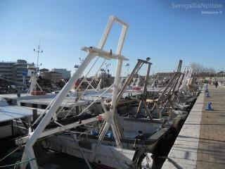 Navi da pesca ferme al porto di Senigallia, darsena sul piazzale Nino Bixio, porto, navi, pesca, vongolare