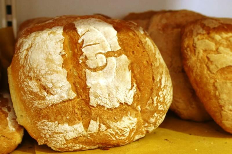Pagnotte di pane