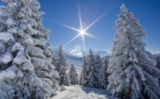 Paesaggio invernale con neve