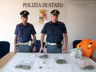 La Polizia di Senigallia alle prese con lo spaccio di stupefacenti in città: nuovo sequestro