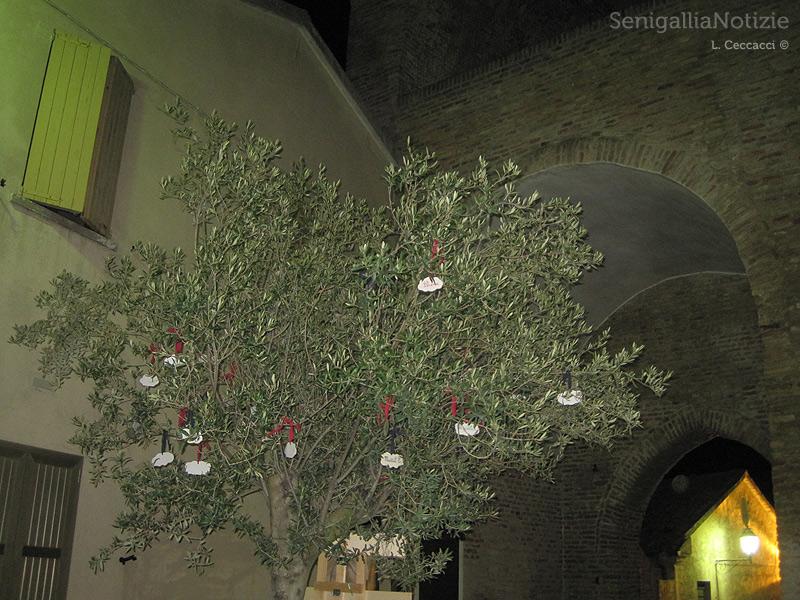 Festa Olio Nuovo 2012 a Scapezzano