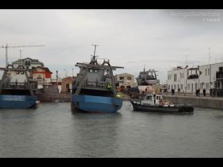L'ormeggiatore sposta la terza motonave del Navalmeccanico di Senigallia, varata martedì 27 novembre