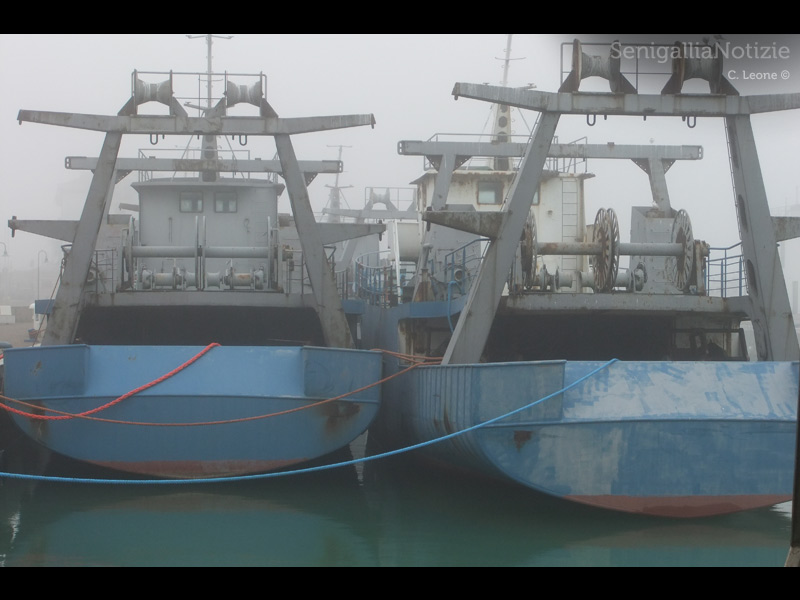 Le imbarcazioni dell'ex cantiere del Navalmeccanico ferme al porto di Senigallia