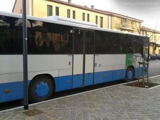 Trasporto pubblico locale, tpl, autobus, mobilita' sostenibile, bus, corriera