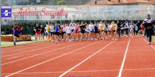 34°edizione del Trofeo podistico 'Città di Senigallia'
