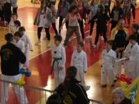 Giocagin 2013-esibizione atleti ataekwondo