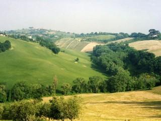 Valle del Cesano, foto di Marco Giardini