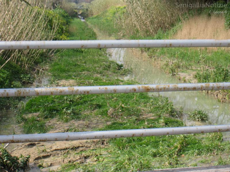Fosso della giustizia a Senigallia, allagato dopo le piogge invernali