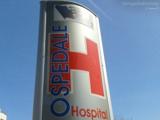 Insegna presso l'ospedale di Senigallia