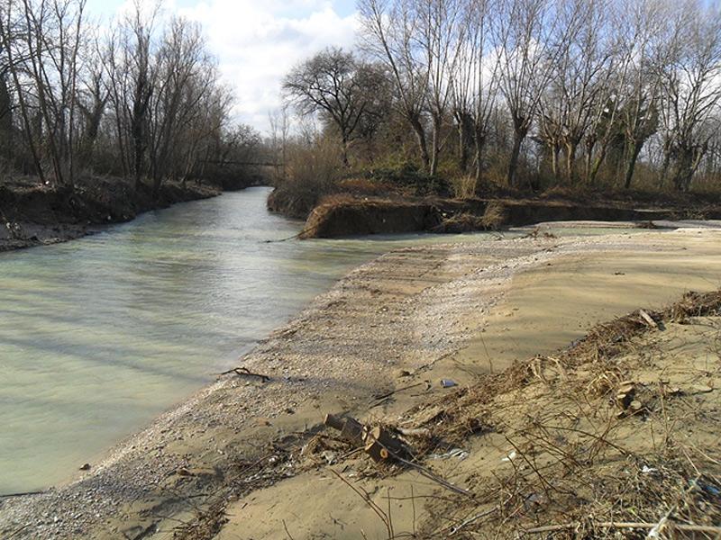 L'area della confluenza tra il fiume Misa e il Nevola