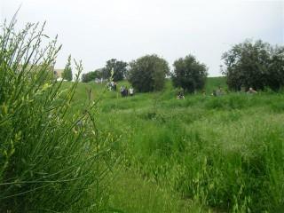 In tanti tra il verde del Cesano per il 1°maggio