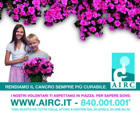 12 maggio: Azalea della Ricerca dell'AIRC per la Festa della Mamma