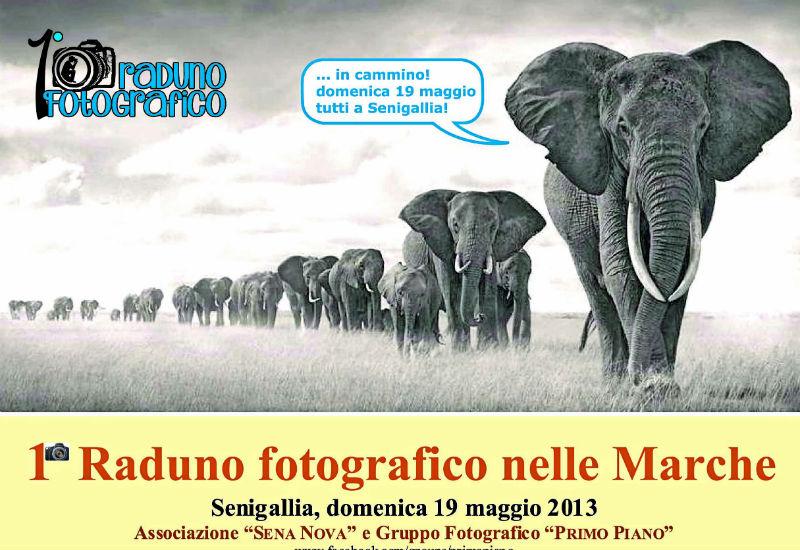 1° Raduno Fotografico nelle Marche a Senigallia il 19 maggio