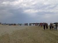 Tanta gente alla rievocazione storica della tratta di Cesano di Senigallia