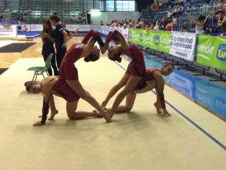 Polisportiva Senigallia, ginnastica