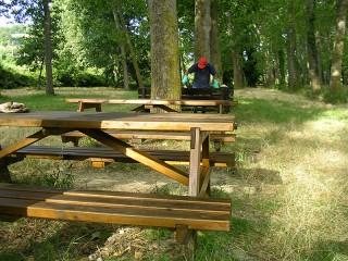 Lavori di manutenzione pioppeto a fianco del fiume Cesano di Senigallia