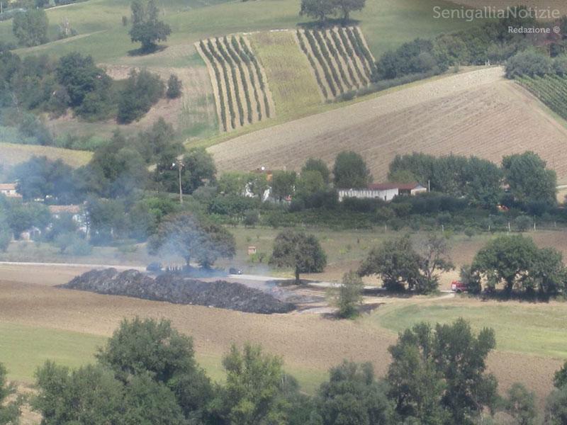 La zona dell'incendio nei campi di Castelleone di Suasa