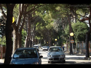 Lampioni accesi in Viale Anita Garibaldi