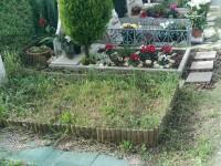 Tumuli a terra nel cimitero di Senigallia