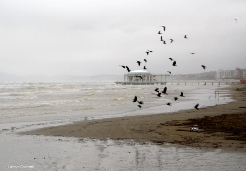 Mare grosso sulla spiaggia di velluto