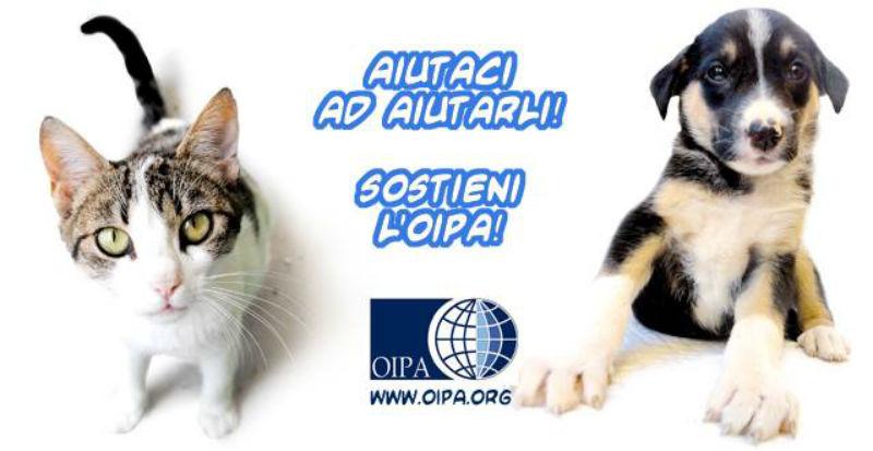 Raccolta fondi OIPA