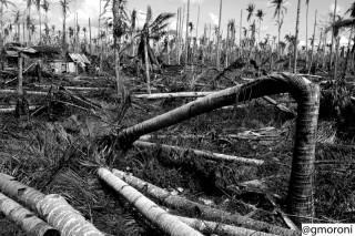 La tragedia delle Filippine nella foto di Gabriele Moroni