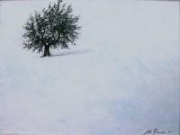 20140208-renzi-nevicata