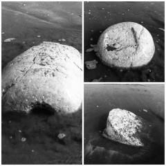 Le pietre trovate in spiaggia a Senigallia (Foto Buontempi)