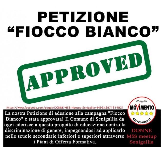 """M5S Senigallia: approvata petizione """"Fiocco Bianco"""""""