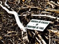 Rifiuti in spiaggia: un cartello proveniente da S. Martino al Tagliamento