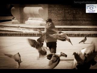 foto-giorno-matteo-angeloni-baldoni