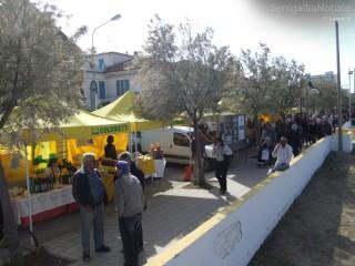 Il mercatino promosso da Riviera Nord sul lungomare Mameli di Senigallia