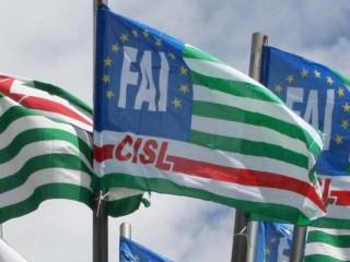 Bandiere della Fai Cisl