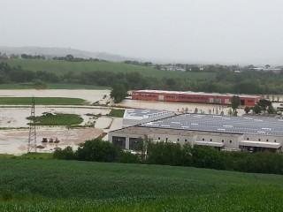 Esondazione nella zona in cui si vuole costruire la centrale biogas di Casine di Ostra