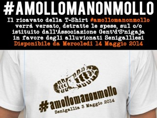 Gent'd'S'nigaja - #amollomanonmollo