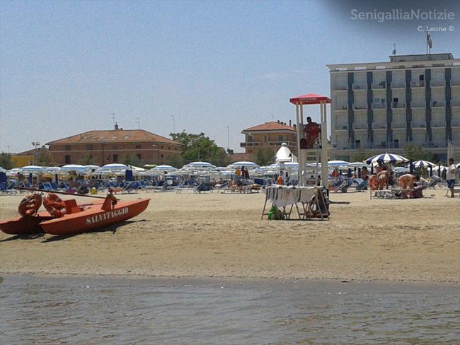 Il servizio di salvamento in spiaggia, a Senigallia