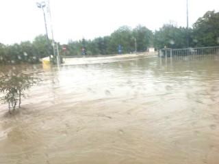 L'azienda Comar di Senigallia durante l'alluvione del 3 maggio 2014