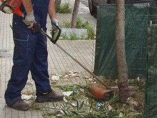 cura e manutenzione del verde urbano