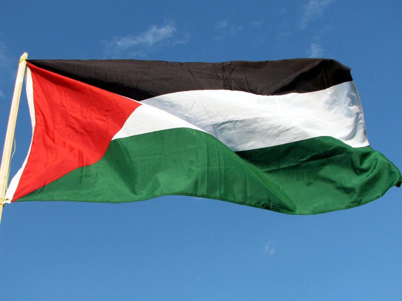 bandiera palestinese, Palestina