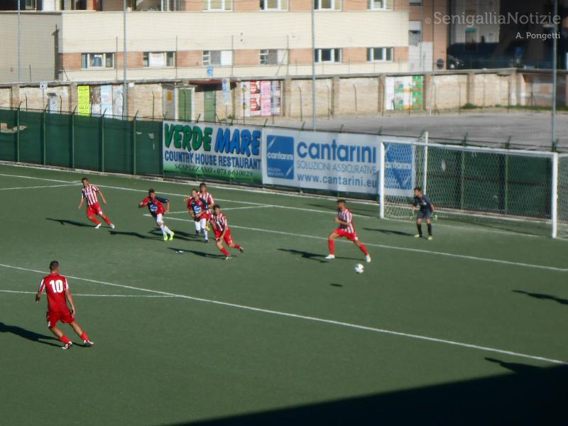 Una fase del match di Eccellenza 2014/15 tra Vigor Senigallia e Urbania. Foto di Andrea Pongetti